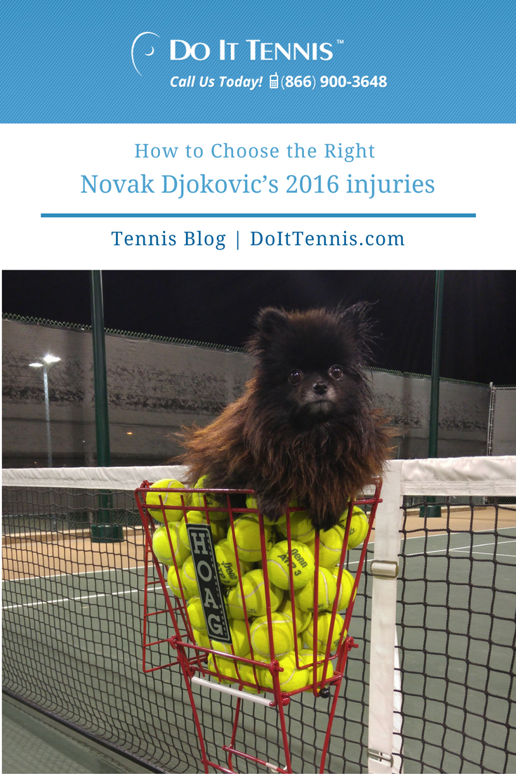 Court Equipment Review Choosing the Right Tennis Ball Hopper