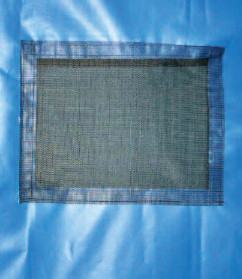 Backdrop mesh window