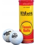Wilson 100 Year Anniversary Edition Extra Duty Tennis Balls (Can) - US Open