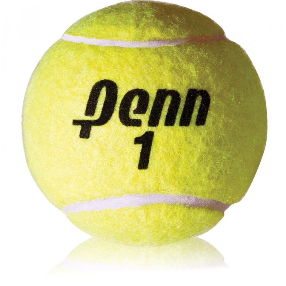Penn Championship Regular Duty Tennis Balls (Can)