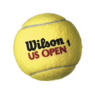 Wilson US Open Regular Duty Tennis Ball Can (4 Balls)