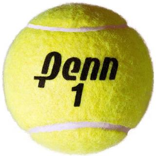 Penn Championship Regular Duty Tennis Balls (Case)