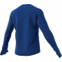Adidas Own The Run Longsleeve Training Tee (Collegiate Royal)