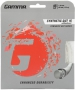 Gamma Synthetic Gut with Wearguard 16g (Set) - Inexpensive Strings