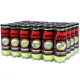 Penn Championship Extra Duty High Altitude Tennis Balls (Case) - Penn Tennis Equipment