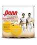 Penn Championship Gold Rush Pack Tennis Balls (Case) - Tennis Accessories