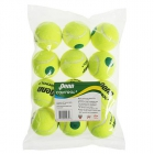 Penn Control+ Tennis Ball 12pk - Tennis Accessories