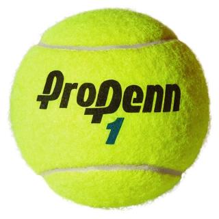 Pro Penn Marathon Extra Duty Tennis Balls (Can)