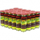 Penn Championship Regular Duty Tennis Balls (Case) - Penn