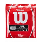 Wilson Natural Gut 17g (Set) - Clearance Sale! Tennis Accessories - String, Grips and Court Equipment