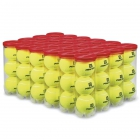 Wilson Team Practice Tennis Ball Case (72 Balls) - Shop the Best Selection of Tennis Balls